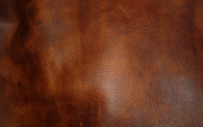 Pull Up bőrök –A természetesség selyemfényű szimbólumai